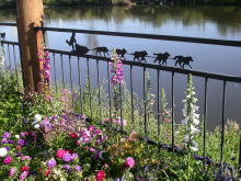 Dog sled fence along the Chena River in Fairbanks, Alaska
