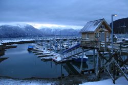 The Small Boat Harbor at Haines, Alaska