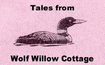 How Loon got his Spots - Wolf Willow Cottage, Yukon