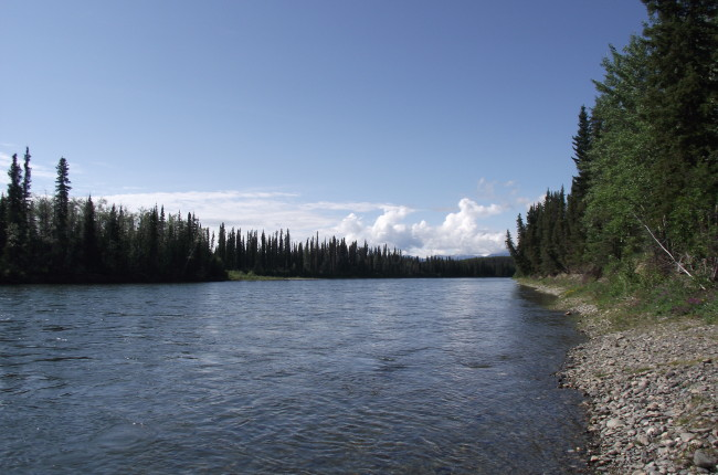 Nisutlin River Recreation Site, Yukon
