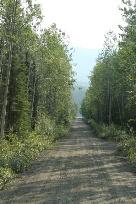 A Guide to Frances Lake Campground, Yukon