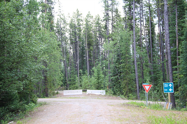 Quiet Lake Campground (South), Yukon