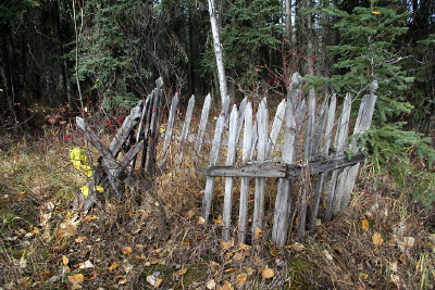 Unmarked grave at Forty Mile, Yukon