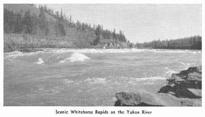 Whitehorse Rapids, 1950