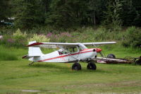 N29762: 1980 Bellanca 8GCBC Scout at Fairbanks, Alaska