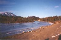 Photo #1 - the Watson River, whose silt formed 'the world's smallest desert' at Carcross, Yukon