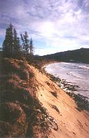 Photo #2 - erosion of the dunes along Lake Bennett - Carcross, Yukon