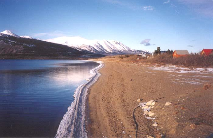 Looking north up the beach from the footbridge across the Nares River - Carcross, Yukon
