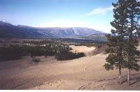 Photo #7 - looking northwest across the Watson River valley from the top of the dunes at 'the world's smallest desert' at Carcross, Yukon