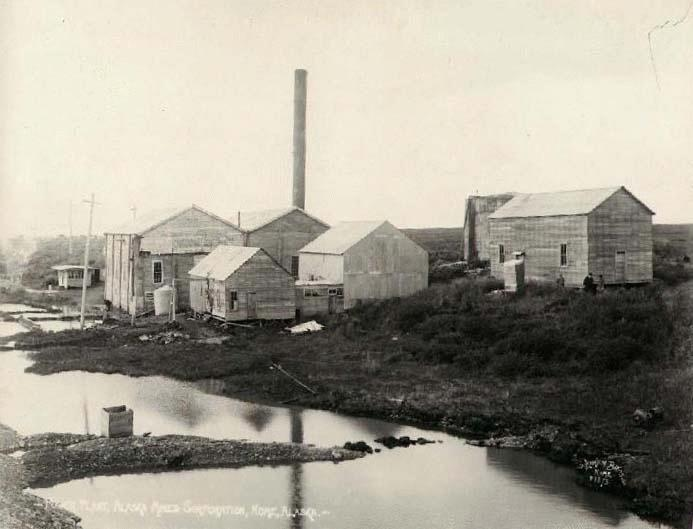 Alaska Mining Corporation, Nome, by the Lomen Bros.