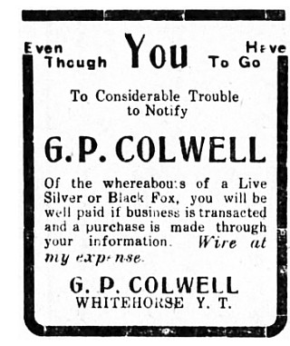 Live silver and black foxes wanted in Whitehorse by G. P. Colwell, May 1913