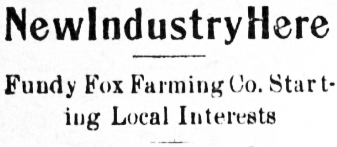 New Industry Here - Fundy Fox Farming Co. Starting Local Interests, May 1913