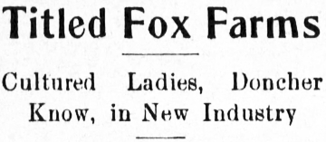 Titled Fox Farms - Cultured Ladies, Doncher Know, in New Industry, April 1913