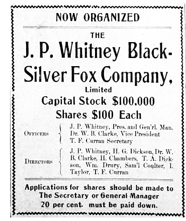 J.P. Whitney Black Silver Fox Company, 1914