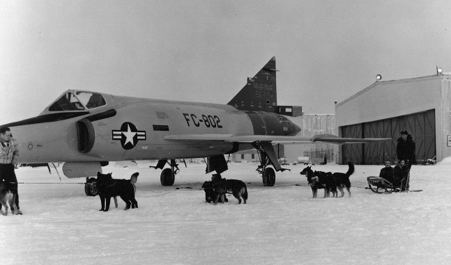 The History Of Military Sled Dogs In Alaska