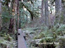 The trail to the Margaret Creek Fish Ladder