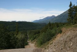 The road to Glenora, BC