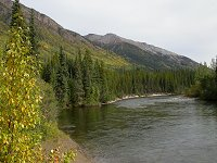 BC Highway 37 - the Cottonwood River