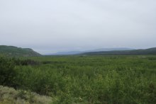 The view south from Km 432 on the North Klondike Highway, Yukon