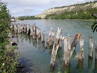 Pilings along the Yukon River