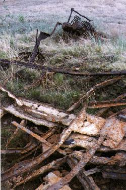 The ruins of the sternwheeler 'F.H.Kilbourne' at Carcross, Yukon, August 1997